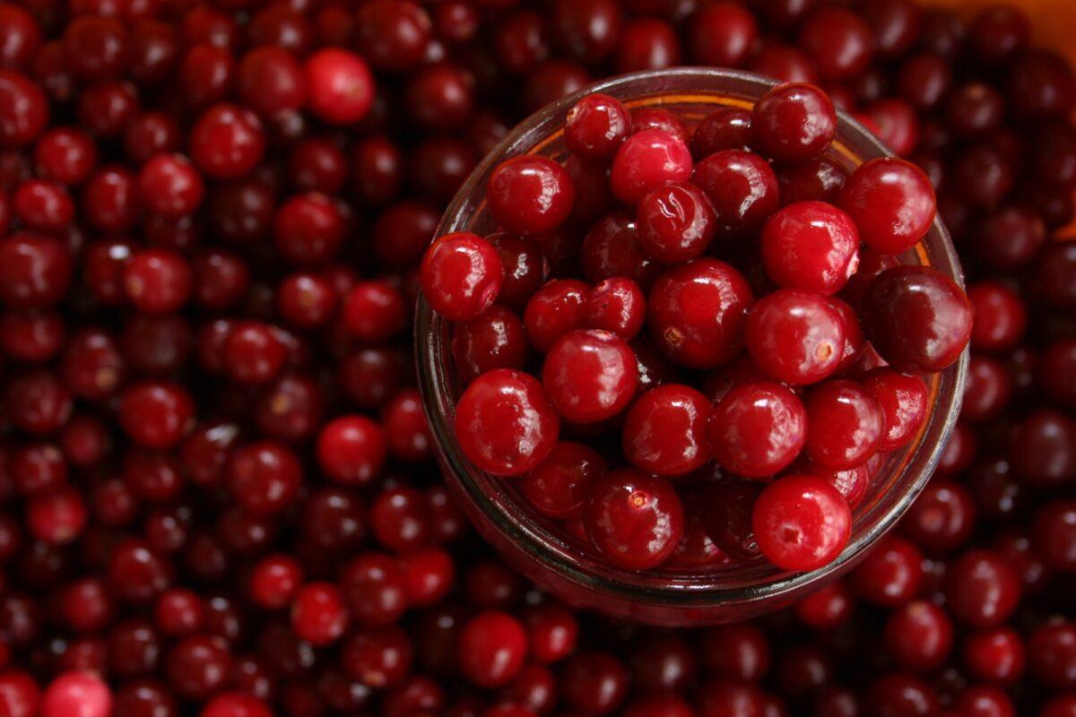 cranberry-bladder-health
